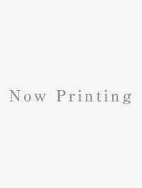 12炎路を行く者・中国語版(新版)